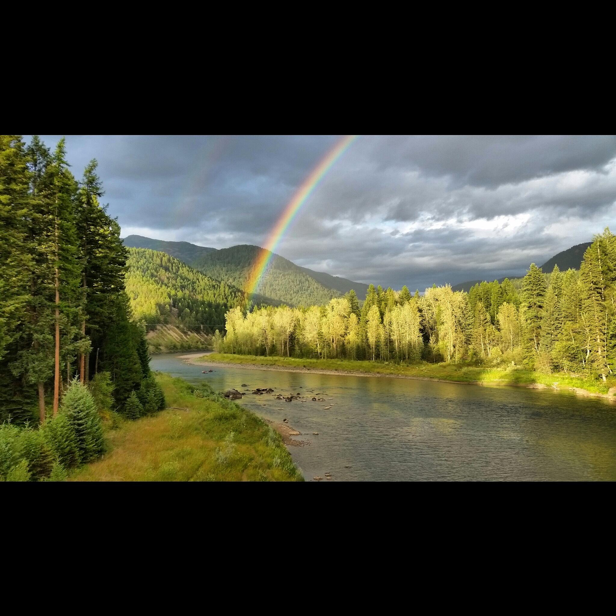Middle Fork Rainbow